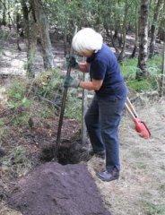 Post-digging-w300.JPG