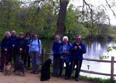 Winkworth_Arboretum_May_2015.JPG